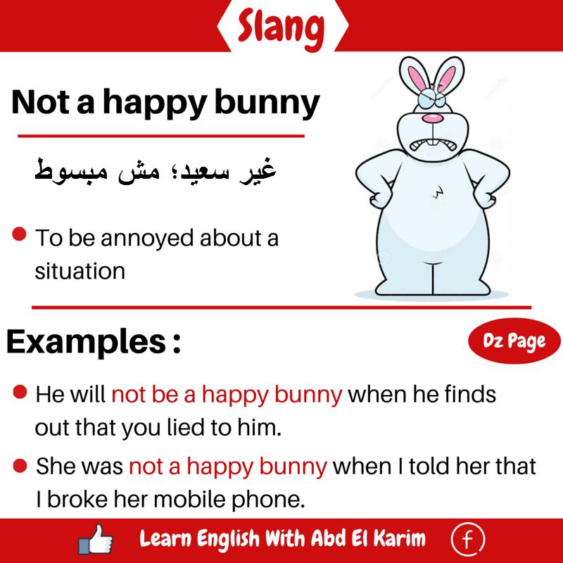 slang-not-a-happy-bunny